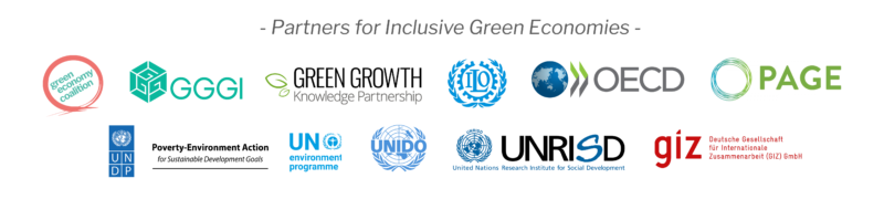 Partners for Inclusive Green Economies logo swarm June 2020 GIZ adjusted