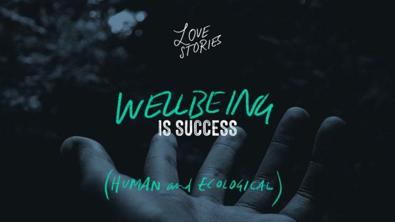 Storiesforlife c6 wellbeingissuccess logo alt 1200x652