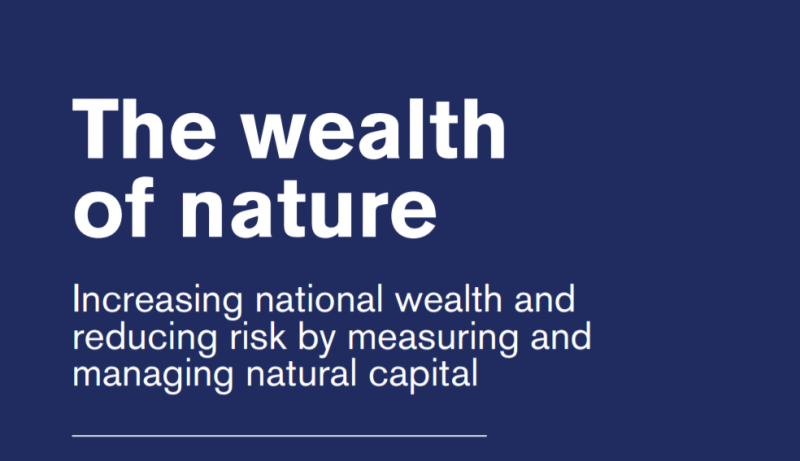 Wealth Of Nature Report Thumb
