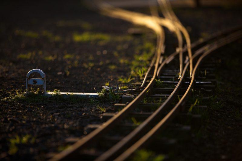 Aftab Uzzaman Flickr