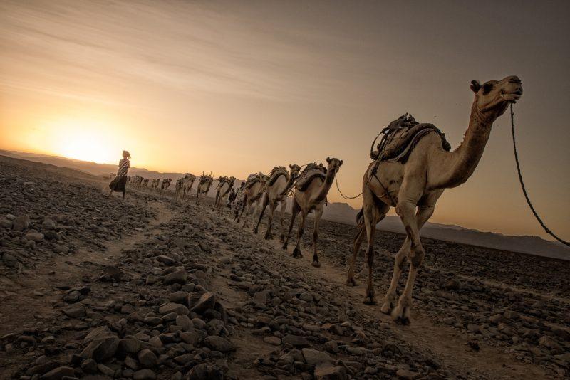 Ethiopia Andrea Moroni Flickr